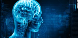 bet brain training games