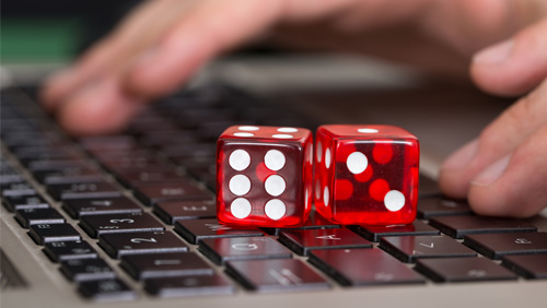 Crime Branch Arrests 2 Directors Of Online Gambling Firm In Haryana