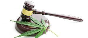 Nevada Marijuana Laws Are Complicated