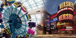 Non-Gaming Activities in Las Vegas