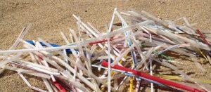 Plastic Straws-The danger in nature