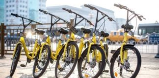The City Rent-a-Bike Craze