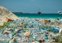 How to Clean Plastic from the World's Oceans
