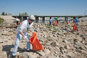 Beach, River, and Lake Cleanups