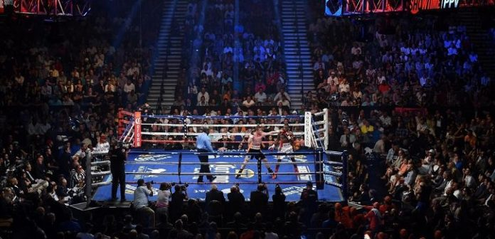 Exciting Fights Scheduled for 2019