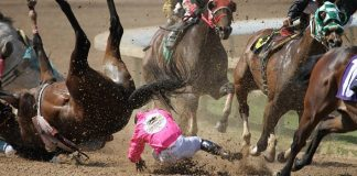 Pari-Mutuel Betting and the Treatment of Animals