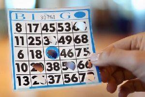 charitable bingo