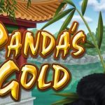 pandas gold - usa casino online